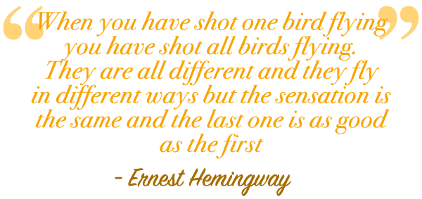 wingshoot_quote
